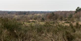 Blick über die Heideterrassen