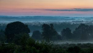 Nebel zur Blauen Stunde