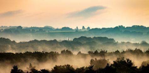 Der Nebel hält sich