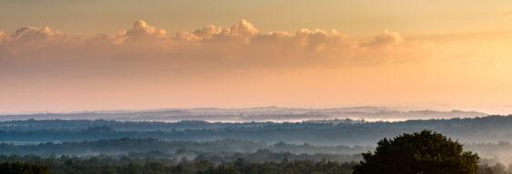 Nebel über der Wahner Heide